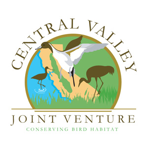 Central Valley Joint Venture